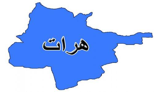 نتیجه تصویری برای قتل در هرات