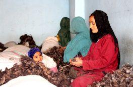 از مجبوریت تا استثمار زنان در فابریکههای کرک پاکی