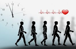 پیادهروی، اکـسیر سـلامتی