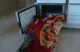 ادامهی سریال قتل زنان در هرات