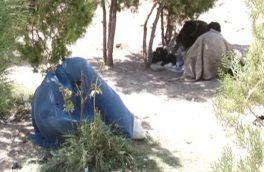 روایتی از زندگی زنان معتاد در ولایت هرات