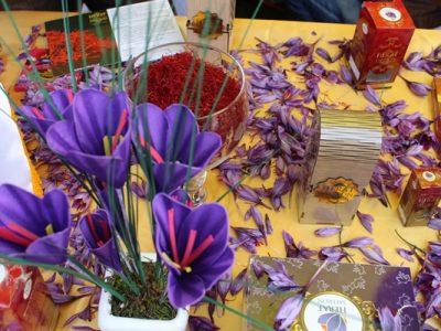 سومین جشنواره ملی گل زعفران