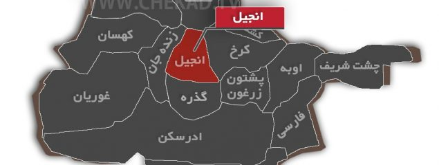 زنانی که میخواهند در شهرستانهای هرات شهردار شوند