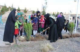 جشن نهالشانی و سهم زنان هرات در سرسبزی محیط زیست
