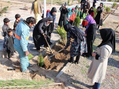 جشن نهالشانی زنان در هرات