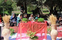 سمنوپزان در هرات؛ به پیشواز از سال نو سمنو پختند