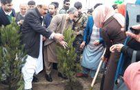 """برگزاری همایش""""نهال شانی صلح سبز ۹۸″ در هرات"""
