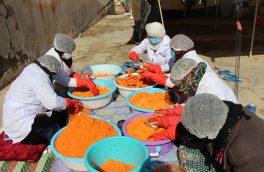 زنان در تلاش رشد تولیدات داخلی
