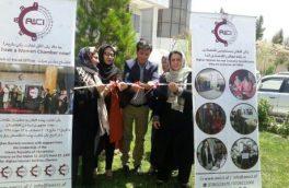اتاق تجارت و صنایع زنان: ۱۵۰۰ زن در هرات مصروف فعالیتهای اقتصادی هستند