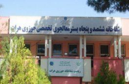 شکایت پرستاران زن از برخورد نامناسب همراهان بیمار در شفاخانه حوزوی هرات