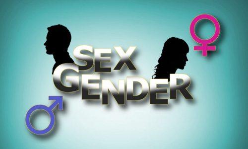دستنامۀ آموزش جنسیت