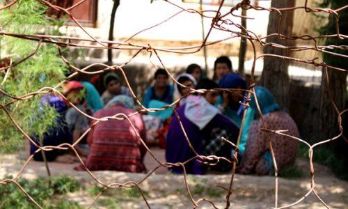 یک پزشک و ۲۵۰ بیمار روانی در تیمارستان هرات