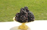 تصاویری از جشنوارۀ انگور و عسل در هرات