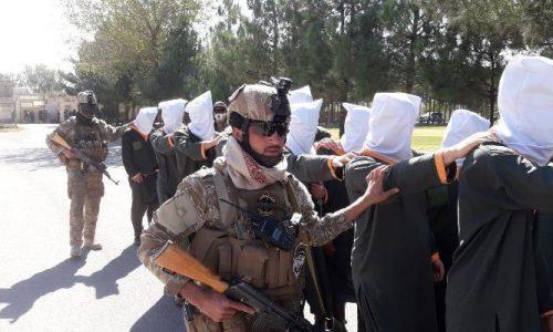 بازداشت ۱۷ تن به اتهامهای مختلف از سوی ریاست امنیت ملی