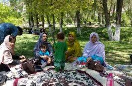 تجلیل از نوروز در هرات