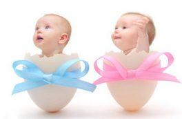 نقش مساوی زن و مرد در تعیین جنسیت جنین