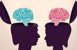 تبعیض جنسیتی؛ از ادبیات گفتاری تا نصاب درسی