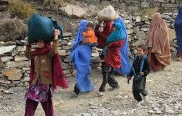۵ میلیون نفر به دلیل ناامنی و جنگ بیجا شده اند