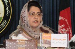 کاهش هفت درصدی خشونتها در ولایت هرات