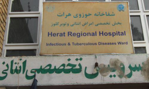 افزایش توبرکلوز در بین زنان هرات