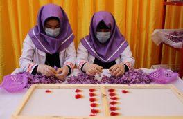 افزایش علاقمندی زنان هرات به فعالیتهای تجارتی