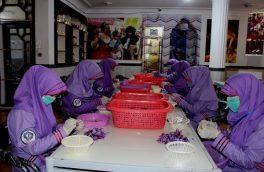 سهم زنان هرات در تولید و پروسس طلای سرخ