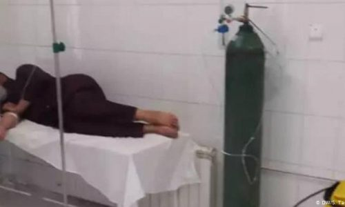 شکایت شهروندان هرات از بالا بودن هزینه تست کرونا در شفاخانههای خصوصی